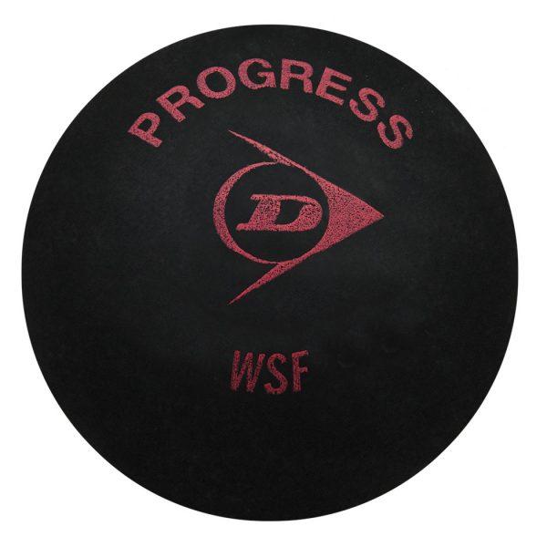 DunlopProgress3