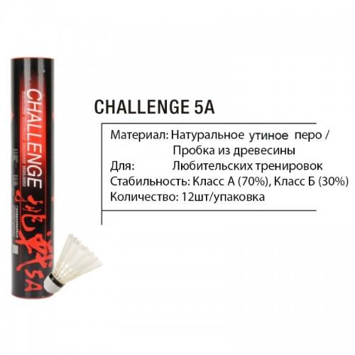 ch5a5-500x500