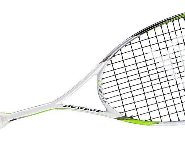 dunlop-biomimetic-elite-gts